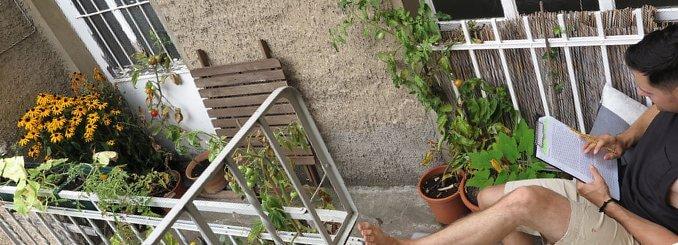 Ich gärtnere auf kleinstem Raum - meinem Balkon