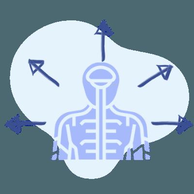 Stressreaktion und Folgen von Stress
